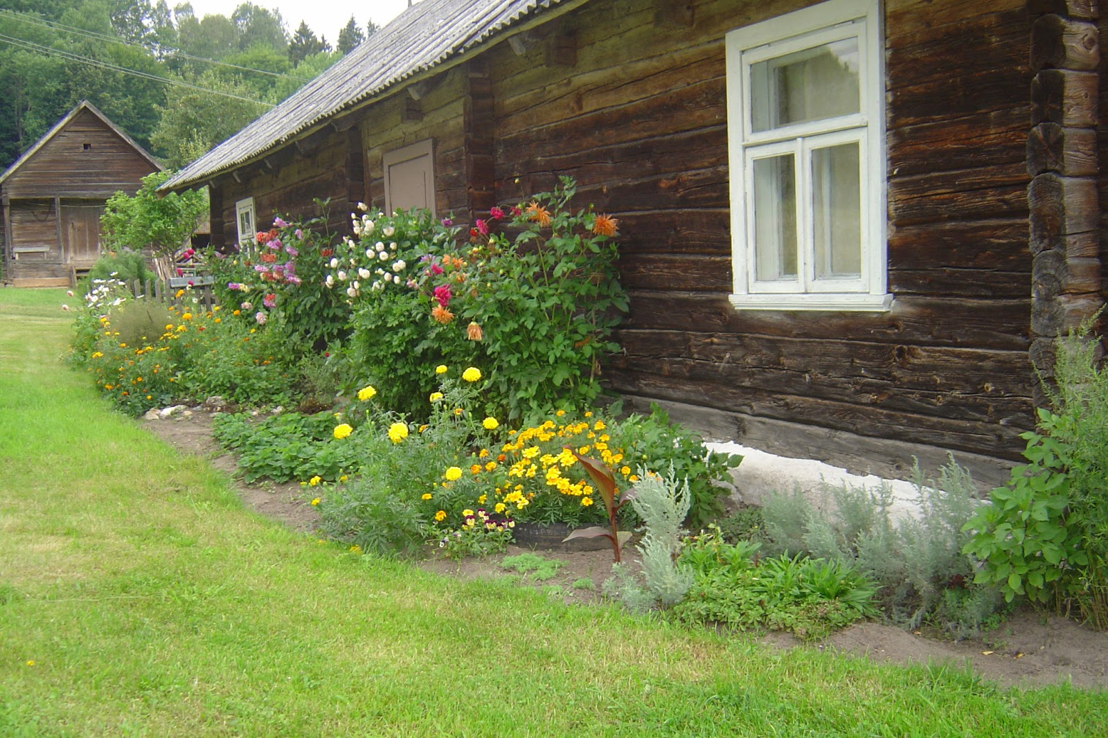 Country (kaimiško) stiliaus sodas